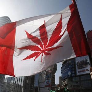 canada <strong>marijuana</strong>