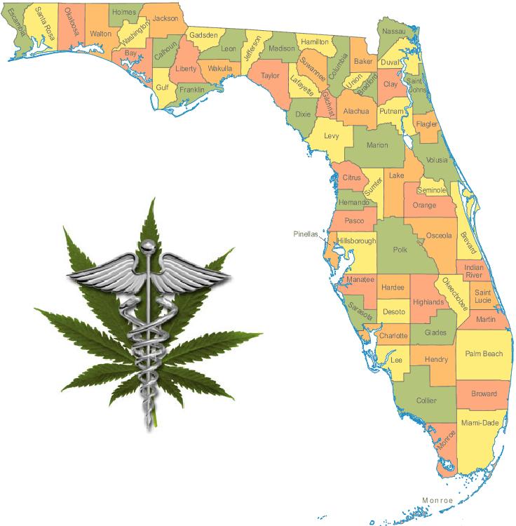 florida legalizes