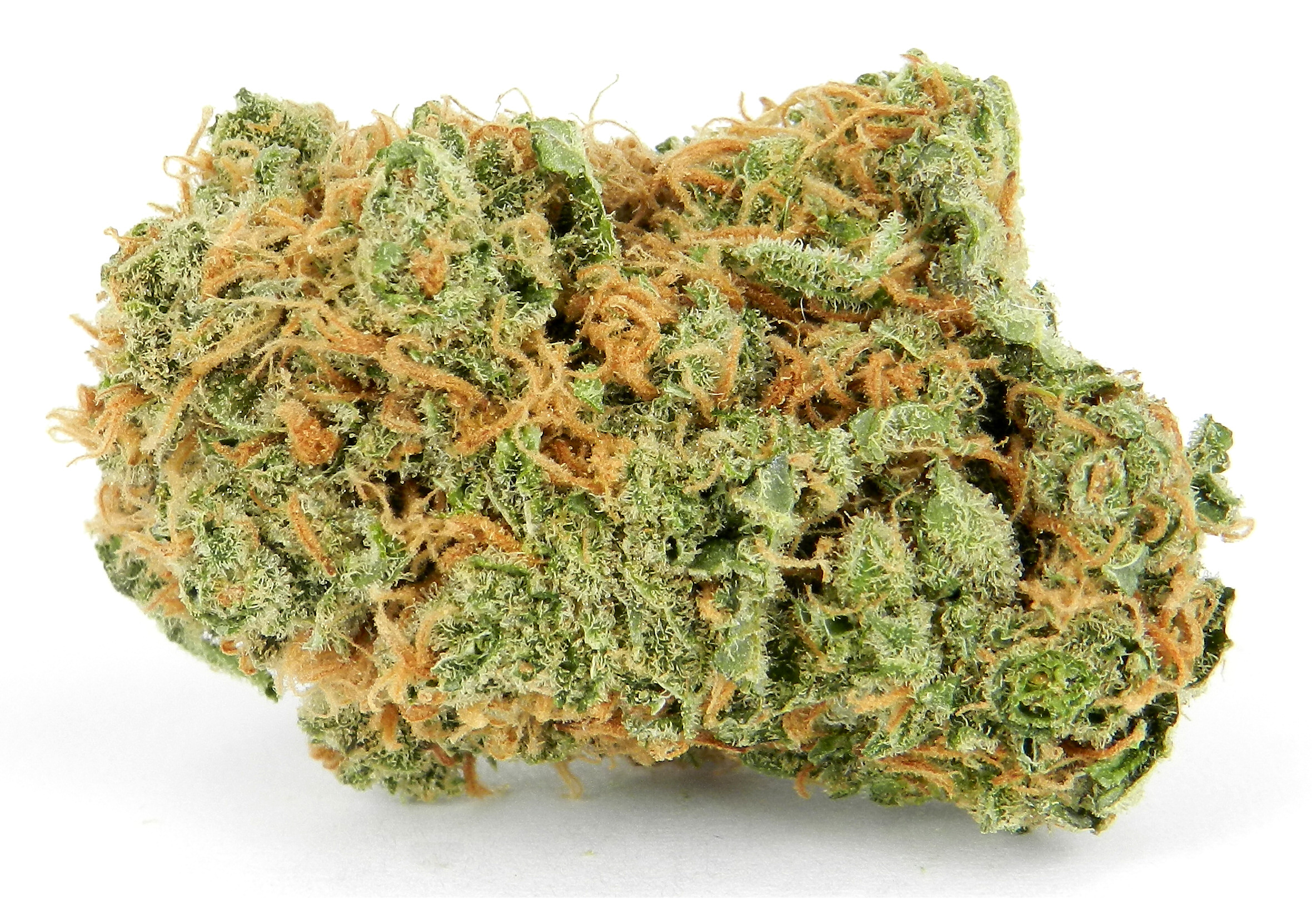 Top 10 <strong>Cannabis</strong> Studies