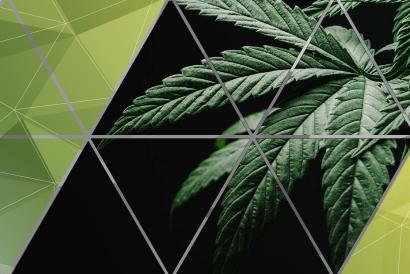 Legalization Tasks Force