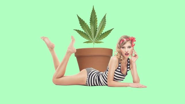 Marijuana Beauty Products